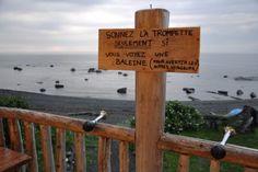 La Gaspésie en 35 étapes: poursuite de notre périple en Haute-Gaspésie.