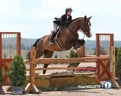Mollie Kowalchik at Horse Shows By the Bay