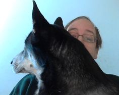 ♥ You get too big to be a lapdog husky