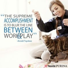 At #Purina, we are always blurring the line between work and play. #Quotes #Play #Toynbee