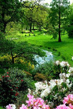 The Hidden Valley at Castle Hill Gardens, Devon by Jayembee69 on Flickr.
