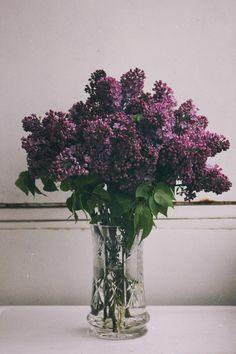 cute flowers in vases