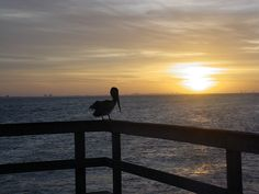 Sunrise over the Sanibel Fishing Pier. Photo by Jil Loewit.