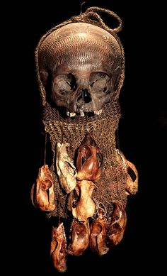 ASMAT TRIBE: HAND CARVED HUMAN ANCESTOR SKULL #5  DECORATED IN MULTIPLE ANIMAL SKULLS  HAND CARVED HUMAN SKULL, ANIMAL SKULLS, WOVEN FIBER.  Asmat is located in the Province of Irian Jaya which is the western half of the island of New Guinea, the second largest island in the world.