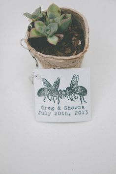 succulent seedling as #favors - photo by http://www.evynnlevalley.com - http://ruffledblog.com/henry-miller-library-wedding/