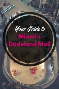 Your Guide to Miami'