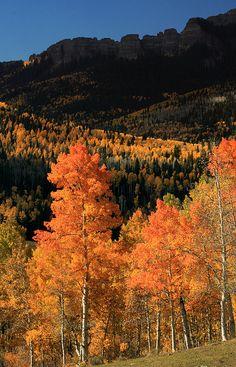 Owl Creek Pass, Gunnison County, Colorado; photo by .Jason Branz