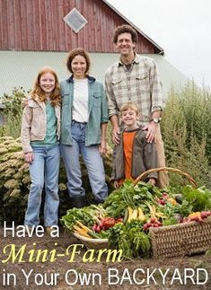 Create a Mini-Farm in Your Own Backyard