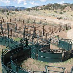 Cattle handling systems and livestock corrals  http://hi-hog.com/design-service/