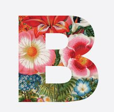 B by Michele Brummer-Everett @mlbeverett