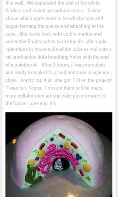 3d edible animal cell cake...