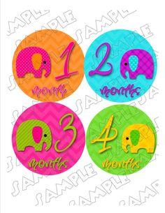 Chevron Elephants Monthly Onesie Stickers  by delightfulprints, $9.00