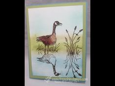 cardmaking technique video: Refelection with tape ... sponging demo ... tutorial with great tips on using packing tape to create reflection images ... excellent info from Frenchie ... Wetlands stamp set ... YouTube ... Stampin' Up!