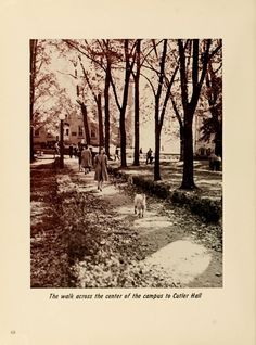 "Athena Yearbook, 1941. ""The walk across the center of the campus to Cutler Hall."" :: Ohio University Archives"
