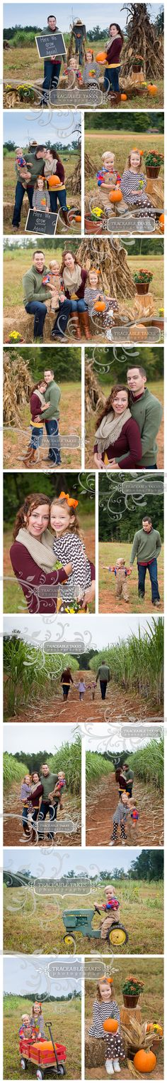 Family Fall Photo shoot New baby announcement Here we grow again