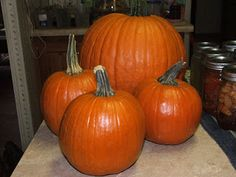 Canning Granny: Canning Pumpkin