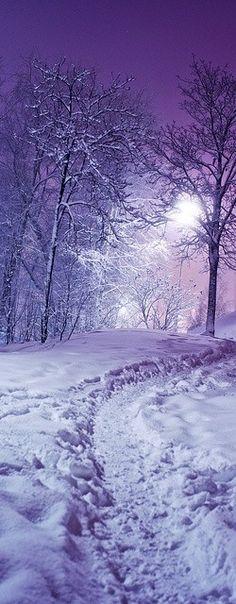 Lavender moonlight on snow!