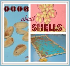 crafts with pistachio shells