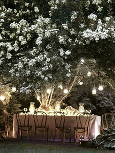 night garden, tree, dream, dinner parties, garden parties, summer nights, backyard, light, moon garden