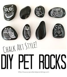 DIY Pet Rocks - Chalkboard Style! from Spool and Spoon -Skye