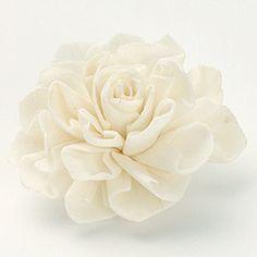Dried Sora Dahlia Head in White - 9 Per Box