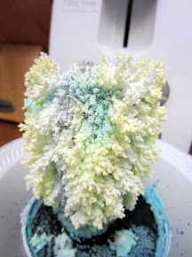 DIY grow crystals1 TBSP salt 1 TBSP water 1 TBSP liquid bluing (Mrs Stewarts brand, they did not have it at Walmart, but did at our local Albertsons) 1/2 TBSP amonia disposable bowl, cardboard (we used TP rolls, but you can also cut out cardboard stand up shapes)