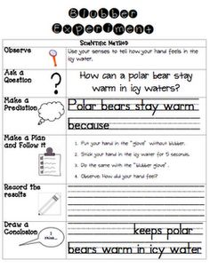 polar bear blubber science experiment