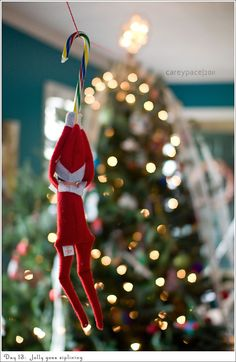 elf CANDY CANE ZIP LINE!  giggles