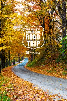 From Route 66 and the PCH to the Blue Ridge Parkway, here are our picks for the most iconic road trips in America, plus tips to make your trek a smooth ride. Check out the Expedia Viewfinder blog for all the details.