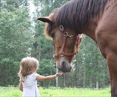 hors friend, little girls, animals, heart, friends