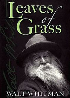 Pure, literary genius...but I may be a bit biased, as Whitman is my favorite poet and essayist.