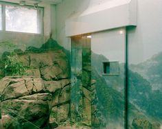 Zoo_02