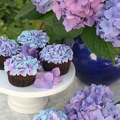 Chocolate Hydrangea cupcakes!