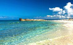 #Bahamas: #Housesitter / #Petsitter needed for home in the Bahamas. www.caretaker.org