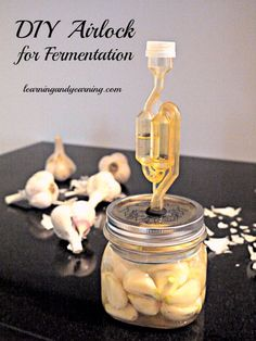 DIY Airlock for Fermentation