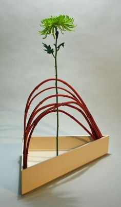 Sogetsu ikebana- Curved and straight lines