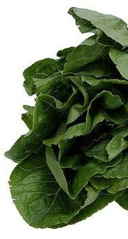 Top 11 Cancer Fighting Foods