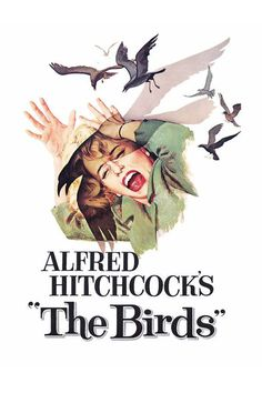 The Birds (Alfred Hitchcock, 1963)