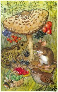 Molly Brett - The Fruit Stall bird, mice, frame, fruit stall, art, children illustr, children book, mous, molli brett
