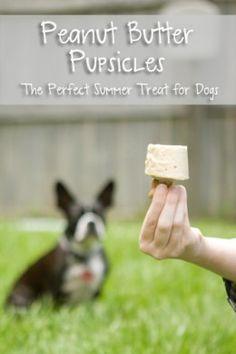 Peanut Butter Pupsicles Homemade Gourmet Dog Treats Recipe