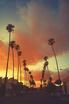 #setting, #inspiration, #california, #palmtrees, #clouds, #sunset, #colorpalette