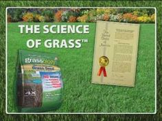 ▶ Grassology - Low Maintenance Lawn Care - As Seen On TV Commercial - YouTube