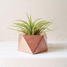Mini Prism Planter prism planter, mini prism