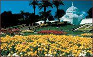 conservatory, francisco trip, conservatori, parks, golden gate park san francisco, flowers, families, gates, city guides