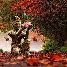 transform into compassion... Kwan Yin with lotus flower and butterflies.