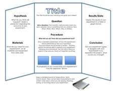 Tri-Fold Board for Science Project