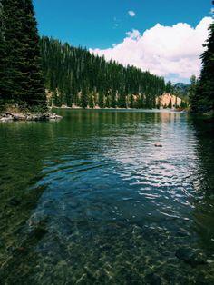 i heart Oregon. Come by for an instagram visit: @blissblog