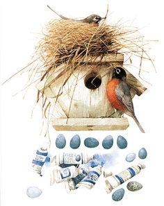 artists, natur sketch, bastin art, artist marjolein, robin egg blue, bird nests, marjolein bastin, bird art, backyard naturegarden