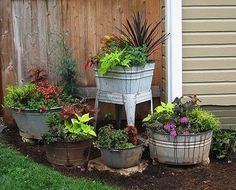 love the cluster of old washtubs as planters