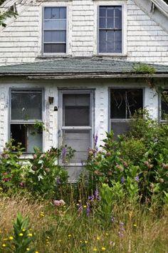 Wellfleet, Cape Cod, Massachusetts